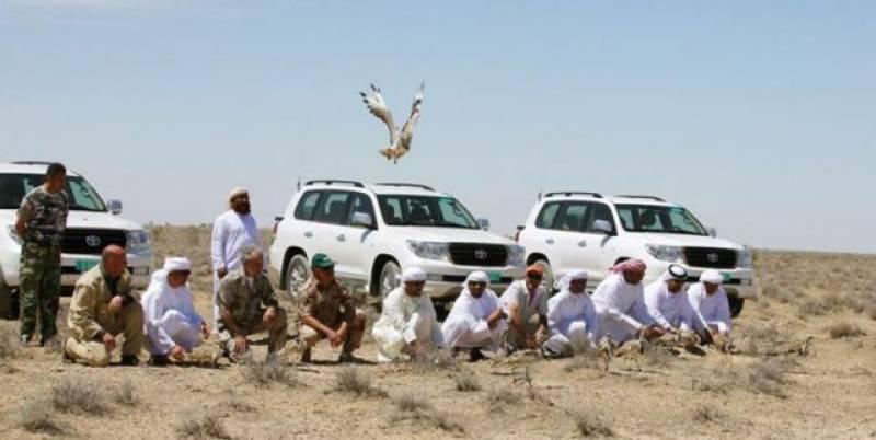 قطری شاہی خاندان شکار کے لیے جھنگ پہنچ گیا