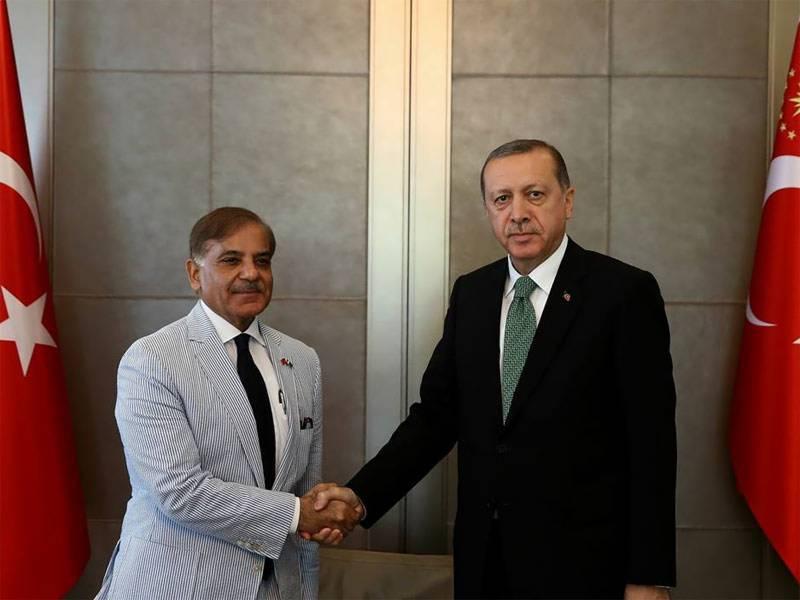 وزیر اعلیٰ پنجاب شہباز شریف کی ترکی کے صدر رجب طیب اردوان سے ملاقات