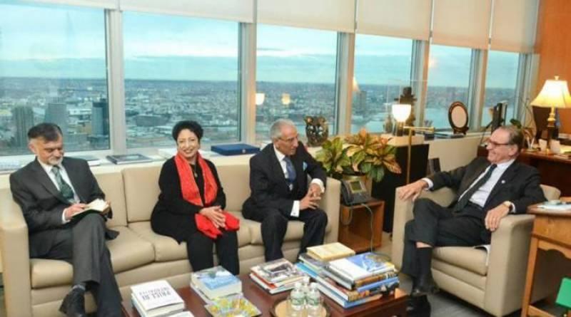طارق فاطمی کی امریکی نائب وزیرخارجہ سے ملاقات،بھارتی جارحیت سے آگاہ کیا