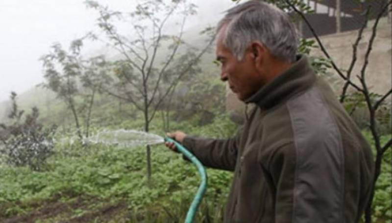 پیرو میں کسان کا کارنامہ ، دھند سے پانی بنا دیا