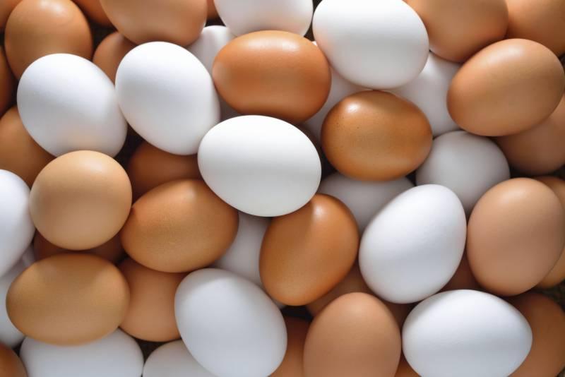 30 لاکھ سے زائد انڈے ....