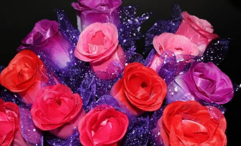 سعودی عرب میں پہلی بار سرخ پھولوں سے ویلنٹائن ڈے منایا گیا