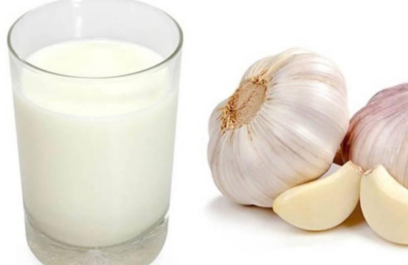 دودھ اور لہسن ملا مشروب دمہ،جوڑوں کے درد میں مفید