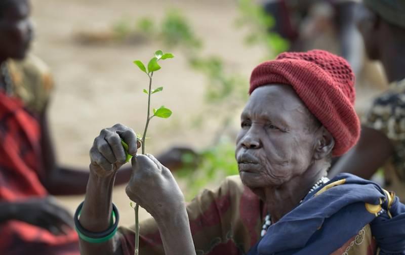 جنوبی سوڈان میں لوگ درختوں کے پتے اور بیج کھاکر گزارہ کرنے لگے