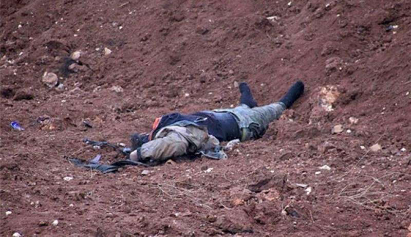 ابوبکر البغدادی کا معاون خصوصی شام میں ہلاک