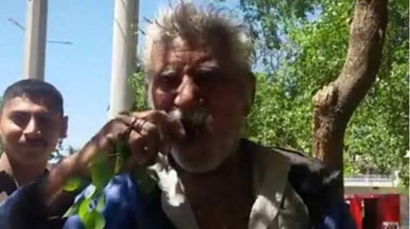 پچھلے 25سال سے پتے کھا کر زندہ رہنے والا شخص کبھی بیمار نہیں ہوا!