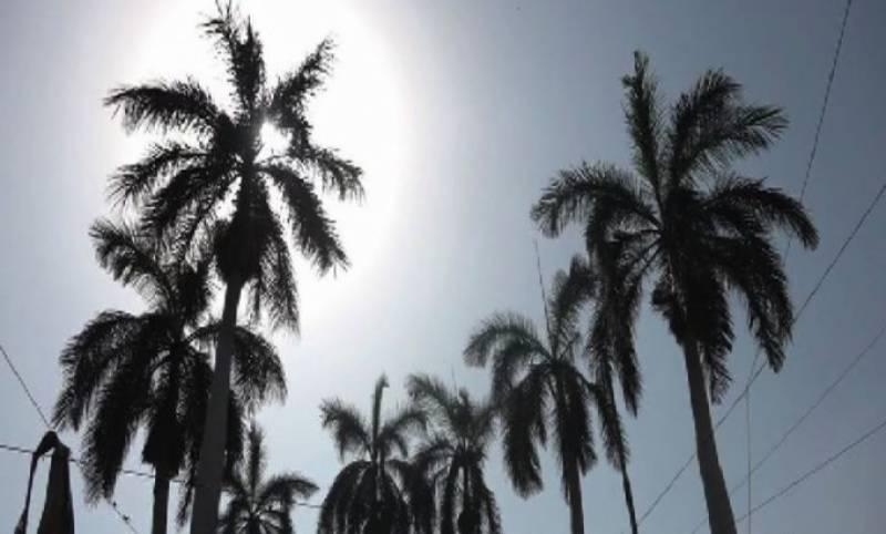 محکمہ موسمیات نے آئندہ چوبیس گھنٹے میں بھی گرم اور خشک موسم کی پیشگوئی کی ہے