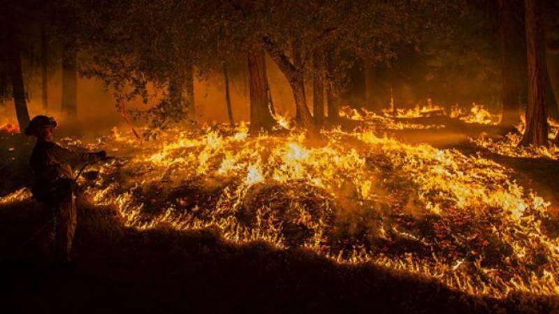 کوئٹہ:موسیٰ خیل میں آسمانی بجلی گرنے سے جنگل میں آگ لگ گئی