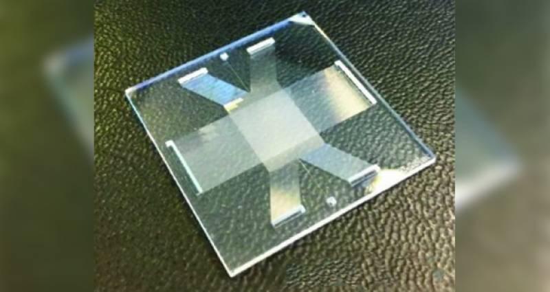 ڈین این اے کو تیزی سے علیحدہ کرنیوالی مائیکروچپ تیار