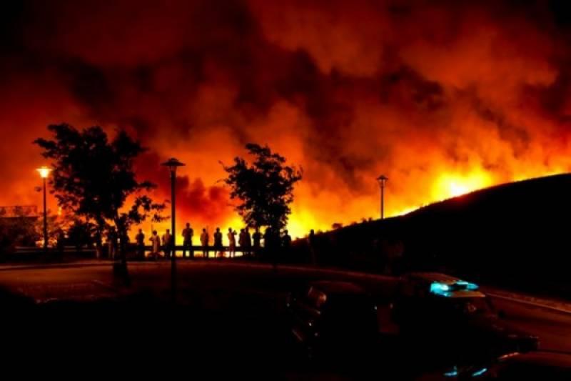 پرتگال کے جنگلات میں آگ لگنے سے 24 افراد ہلاک