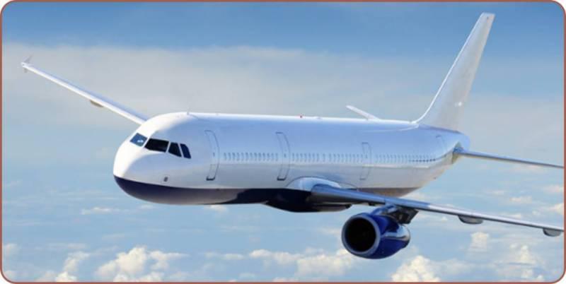 مہنگی ترین ایئر لائن کے جہاز میں خاتون کو بچھو نے کاٹ لیا