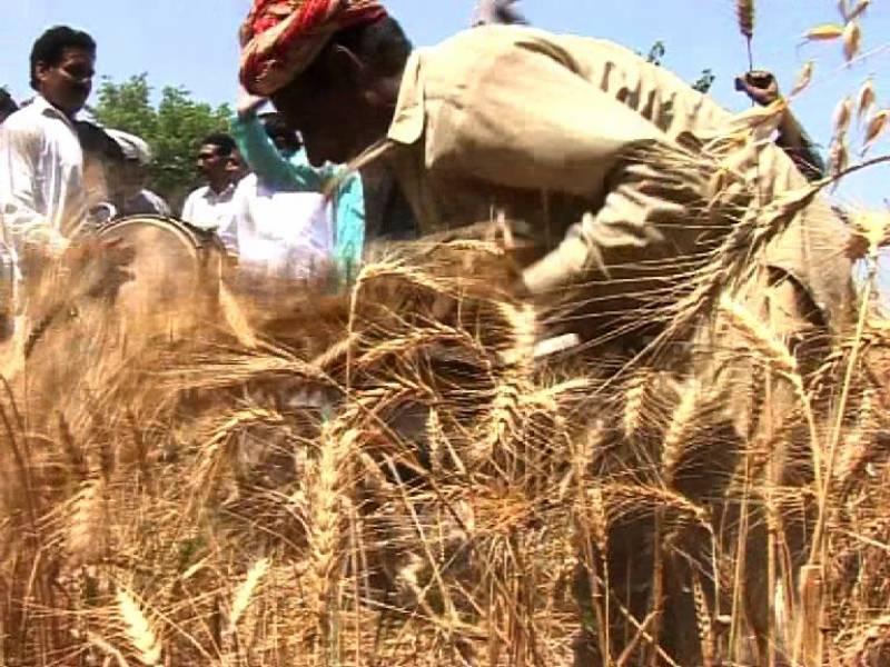 ملک میں پہلی بار کسانوں کو فصل کے عوض قرضہ کی فراہمی شروع