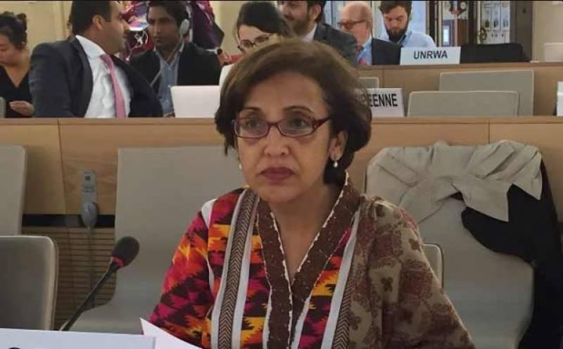 بھارت نے سی پیک کی مخالفت کر کے خطے کو نقصان پہنچایا، تہمینہ جنجوعہ