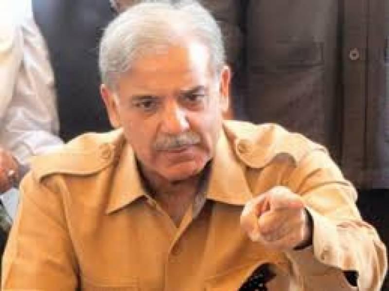 عوام نے عمران نیازی کو جھوٹا ثابت کر دیا، شہباز شریف