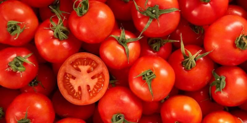 نظر کی کمزوری ،امراض قلب ،کینسر سے محفوظ رہنے کے لئے ٹماٹر انتہائی مفید
