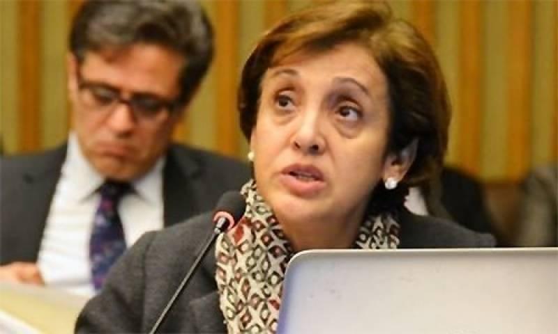 افغان امن کا معاملہ مذاکرات کے ذریعے ہی حل ہو سکتا ہے، تہمینہ جنجوعہ