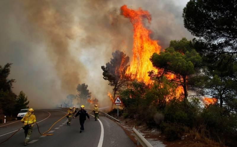اسپین اور پرتگال کے جنگلات میں آتشزدگی سے ہلاکتوں کی تعداد 31 ہو گئی