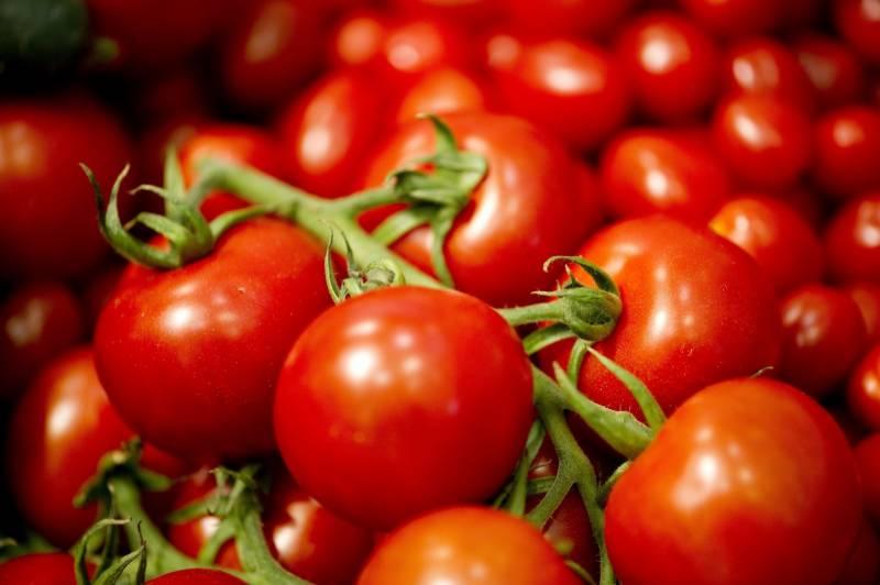 فروٹ ، ٹماٹر اور کیک کو کیسے فریش رکھیں ؟