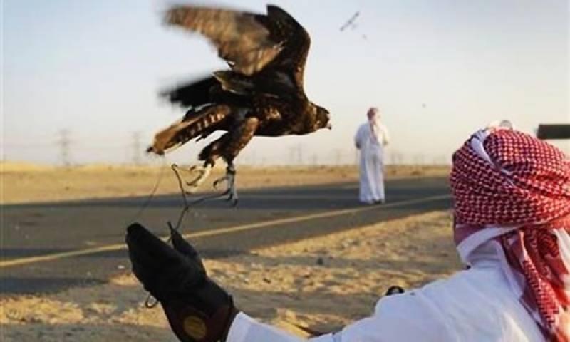 قطری شہزادوں کو پاکستان میں شکار سے روکنے کیلئے درخواست دائر