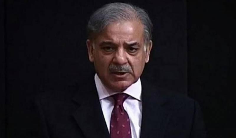 وزیر اعلی شہباز شریف کی آصف زرداری اور عمران خان پر کڑی تنقید