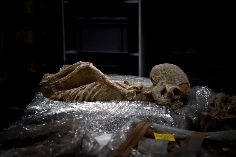 پاکستان سے انسانی تاریخ کی لاکھوں سال پرانی کھوپڑی کی دیافت