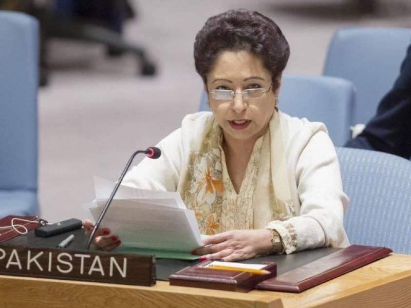 کشمیر اور فلسطین کے مسئلے پر اقوام متحدہ کی ساکھ داؤ پر لگ چکی ہے، ملیحہ لودھی