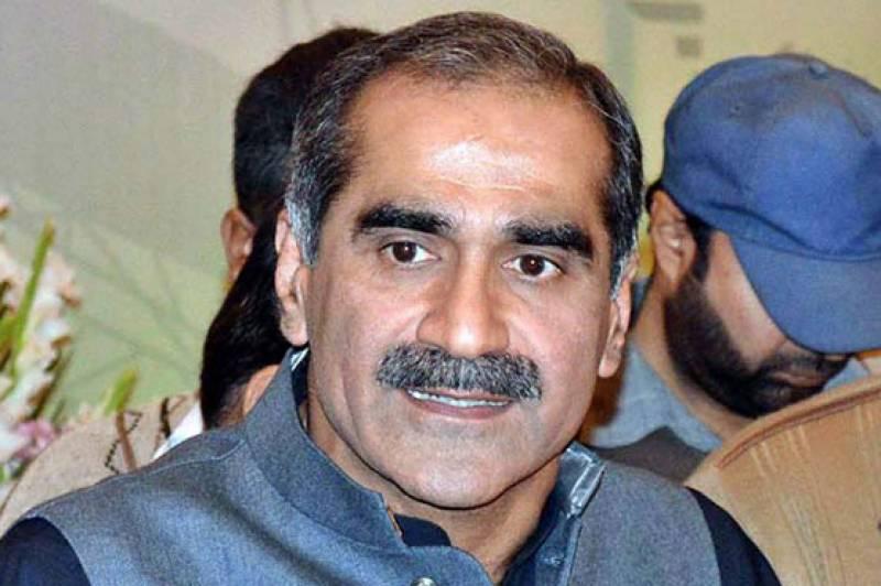 نوازشریف نے چوہدری نثار سے متعلق کوئی بیان نہیں دیا، سعد رفیق
