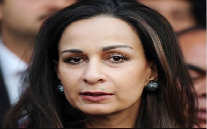 پیپلز پارٹی نے شیری رحمان کو سینیٹ میں قائد حزب اختلاف کیلئے نامزد کر دیا