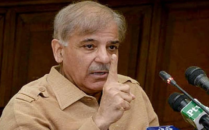 سیاسی مخالفین نے اپنے صوبوں میں دھیلے کا کام نہیں کیا: شہباز شریف