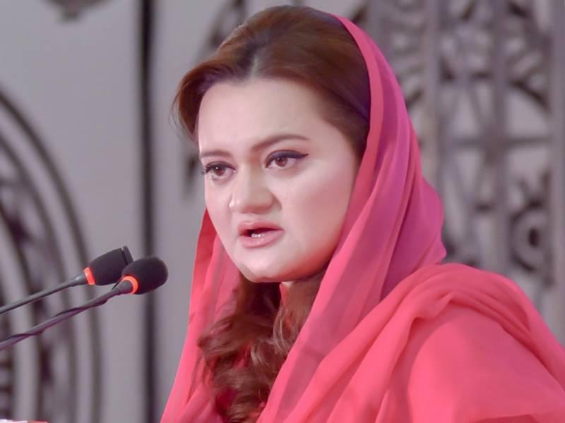 چیرمین پیمرا انتخاب کمیٹی سے مریم اورنگزیب کو نکال دیا گیا،کسی شیرکو نہیں جانتا،میرے جج اصل شیر ہیں:چیف جسٹس پاکستان