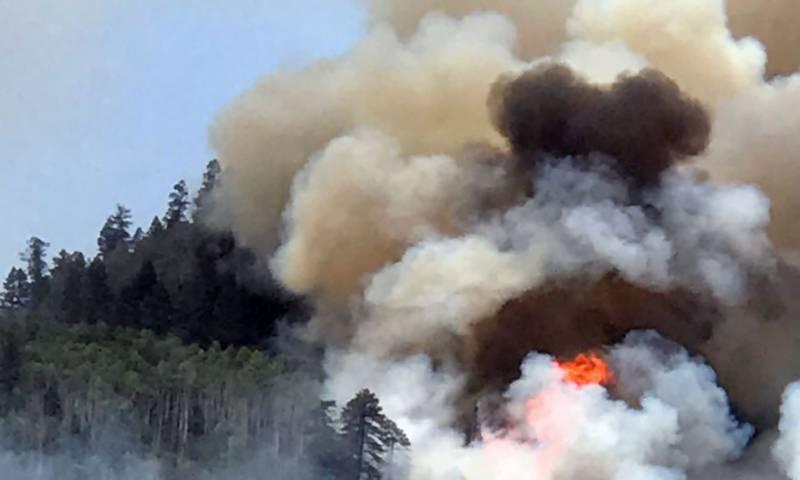 امریکہ: کولوراڈو کے جنگلات میں آتش زدگی، رہائشیوں کا ا