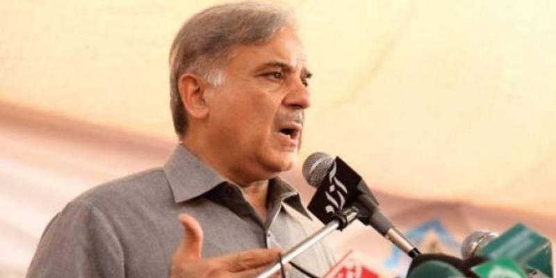 پاکستان کو ملائیشیا بنانے کیلئے جان کی بازی لگا دوں گا: شہباز شریف