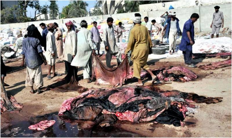 سندھ میں عیدالاضحیٰ کے موقع پر بغیر اجازت کھالیں جمع کرنے پر پابندی عائد