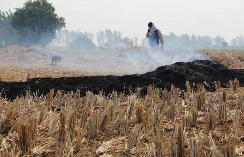 پنجاب میں فصلوں کی باقیات، پولی تھین اور ربڑ جلانے پر پابندی