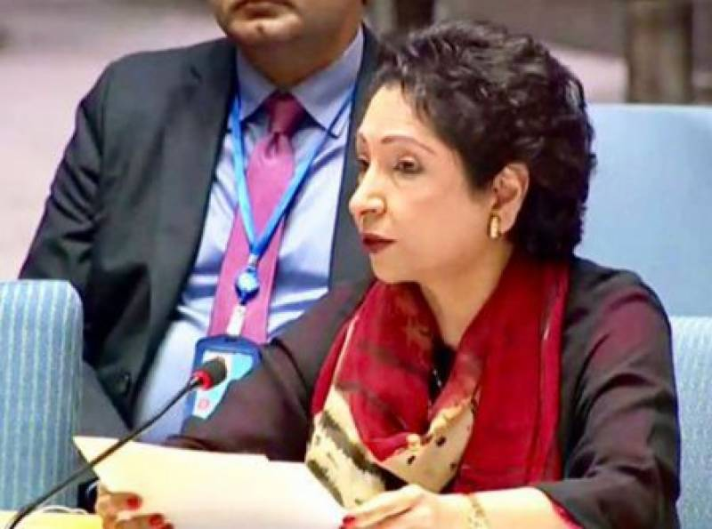 پاکستان مقبوضہ کشمیر کی صورتحال پر سلامتی کونسل کا ہنگامی اجلاس بلانے کی درخواست کردی