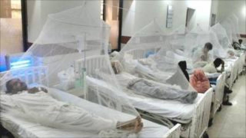 پنجاب میں ڈینگی کے مزید 348 کیسز، تعداد 2 ہزار سے تجاوز کر گئی