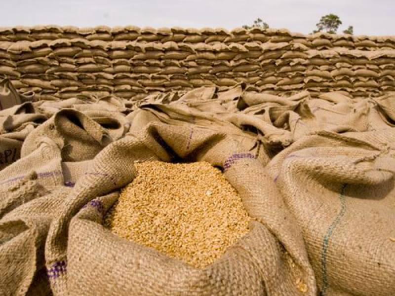 اقتصادی رابطہ کمیٹی کا اجلاس، 3 لاکھ ٹن گندم درآمد کرنے کی اجازت