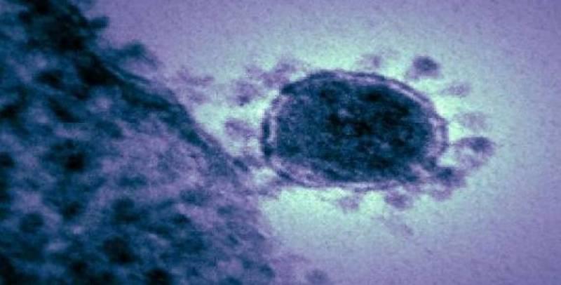 آسٹریلوی سائنسدانوں کا کرونا وائرس تخلیق کرنے کا دعویٰ
