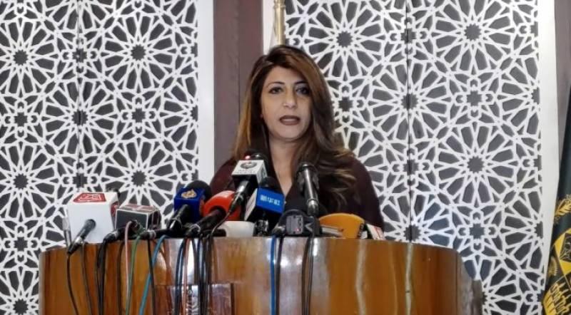 'کالعدم تحریک کی حمایت کر کے بھارت افغان امن عمل کو متاثر کرنا چاہتا ہے'