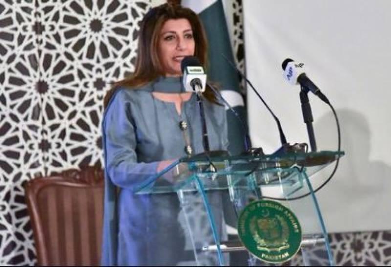 پاکستان سے متعلق بھارتی وزیر دفاع کا بیان ناقابل علاج جنون کا ثبوت ہے، دفتر خارجہ