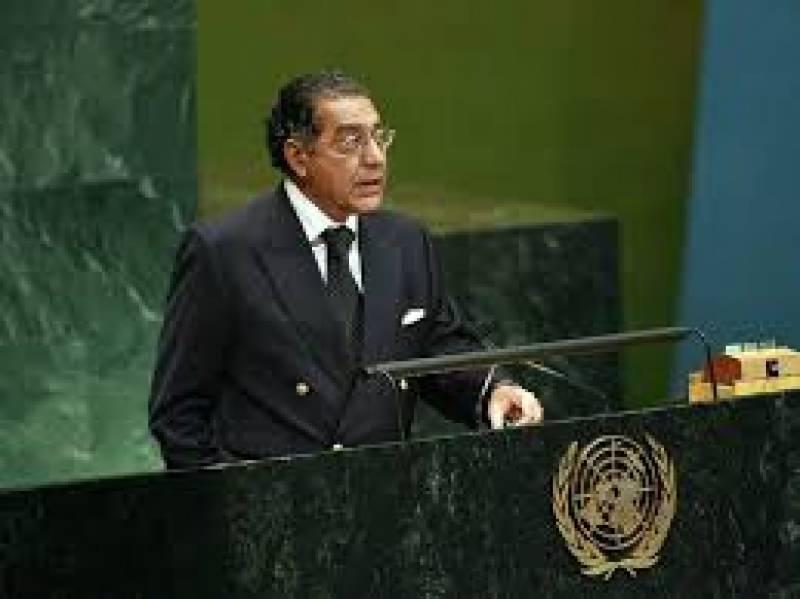 پاکستان اقوام متحدہ کی اقتصادی اور سماجی کونسل کا متفقہ صدر منتخب