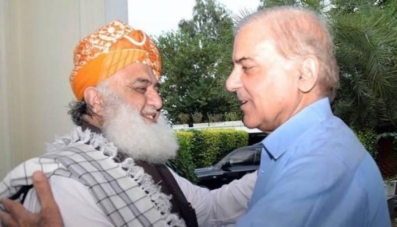 شہباز شریف کی مولانا فضل الرحمان سے ملاقات، حکومت کیخلاف مشترکہ حکمت عملی پر اتفاق