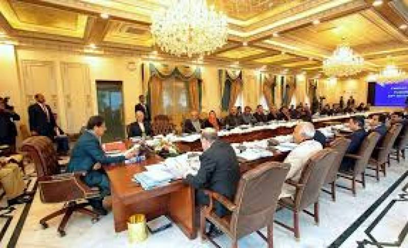 کابینہ ارکان نے جنسی درندوں کو سخت سزائیں دینے کا مطالبہ کر دیا