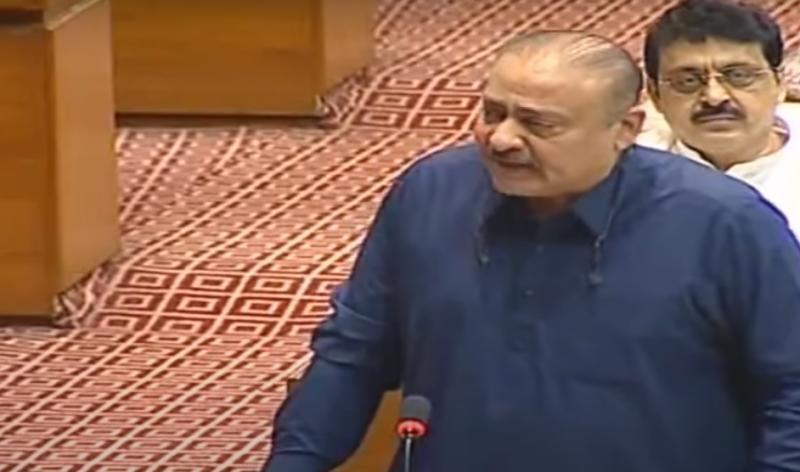 qadir patail,imran khan,rangeela pm,national assembly
