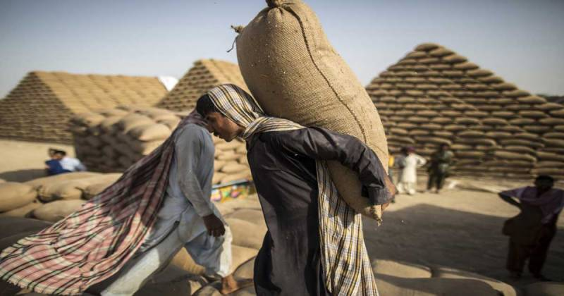 Wheat support price fixed at Rs 2000