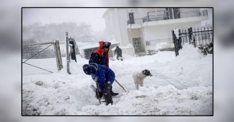 یونان کے سب سے بڑے جزیرہ کریتی میں پچھلے 50 سال کا برفباری کا ریکارڈ ٹوٹ گیا