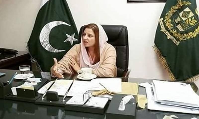سینیٹ انتخابات میں ووٹ ضائع کرنے کا معاملہ، زرتاج گل وزیر نے نوید قمر اور رانا ثناء اللہ کے الزامات کا جواب دیدیا