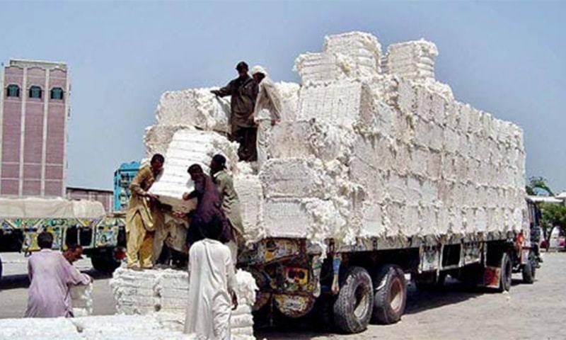 وزرات نیشنل فوڈ سیکیورٹی نے بھارت سے کپاس درآمد کرنے کی مخالقت کر دی