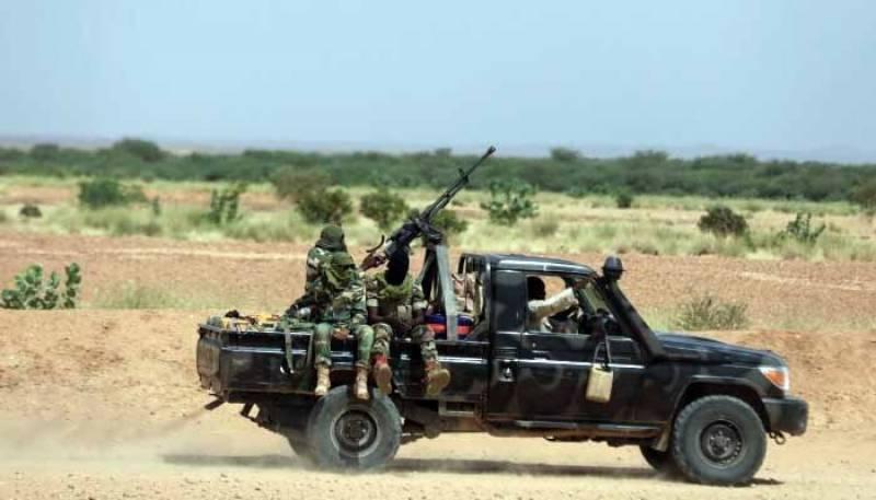 نائجر میں دہشتگردوں نے چند گھنٹوں میں 137 افراد کو ہلاک کردیا