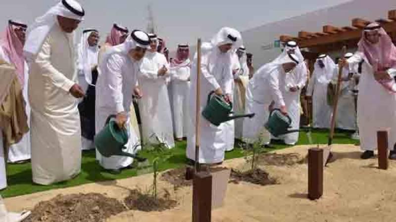 پاکستان کی طرح سعودی عرب کا بھی 10 بلین ٹری سونامی منصوبہ شروع کرنے کا اعلان
